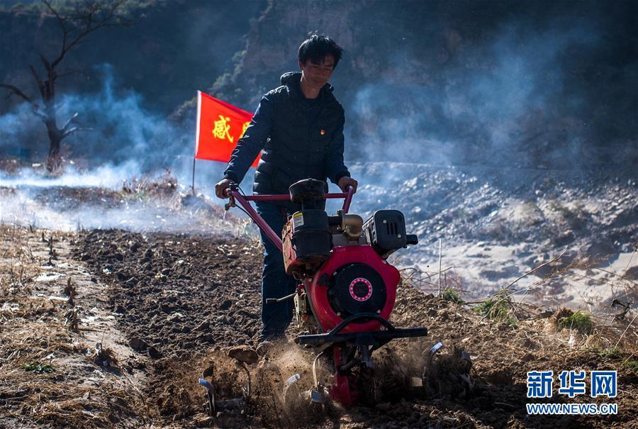 在云南香格里拉市五境乡,格茸帮助生活不便的老人犁地(3月13日摄).
