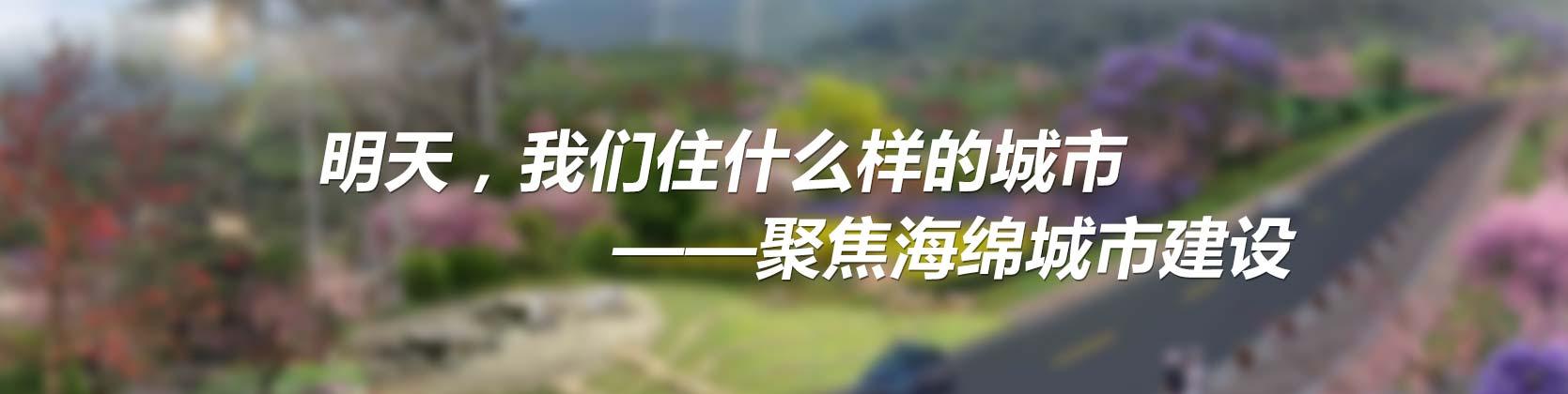 中国城市规划设计研究院高级工程师谢映霞认为,海绵城市建设的目的是